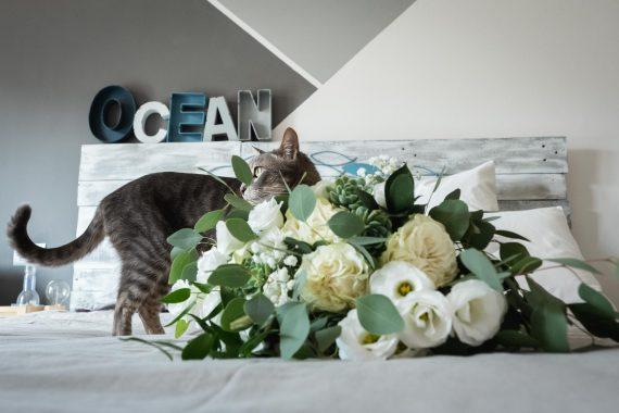 matrimonio ocean gatto fiori
