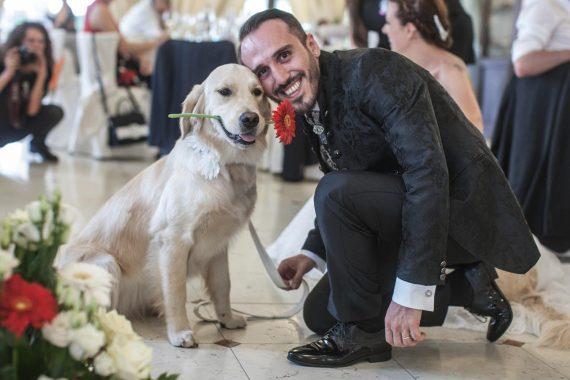 sposo cane fiore ricevimento