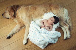 bambino cane famiglia