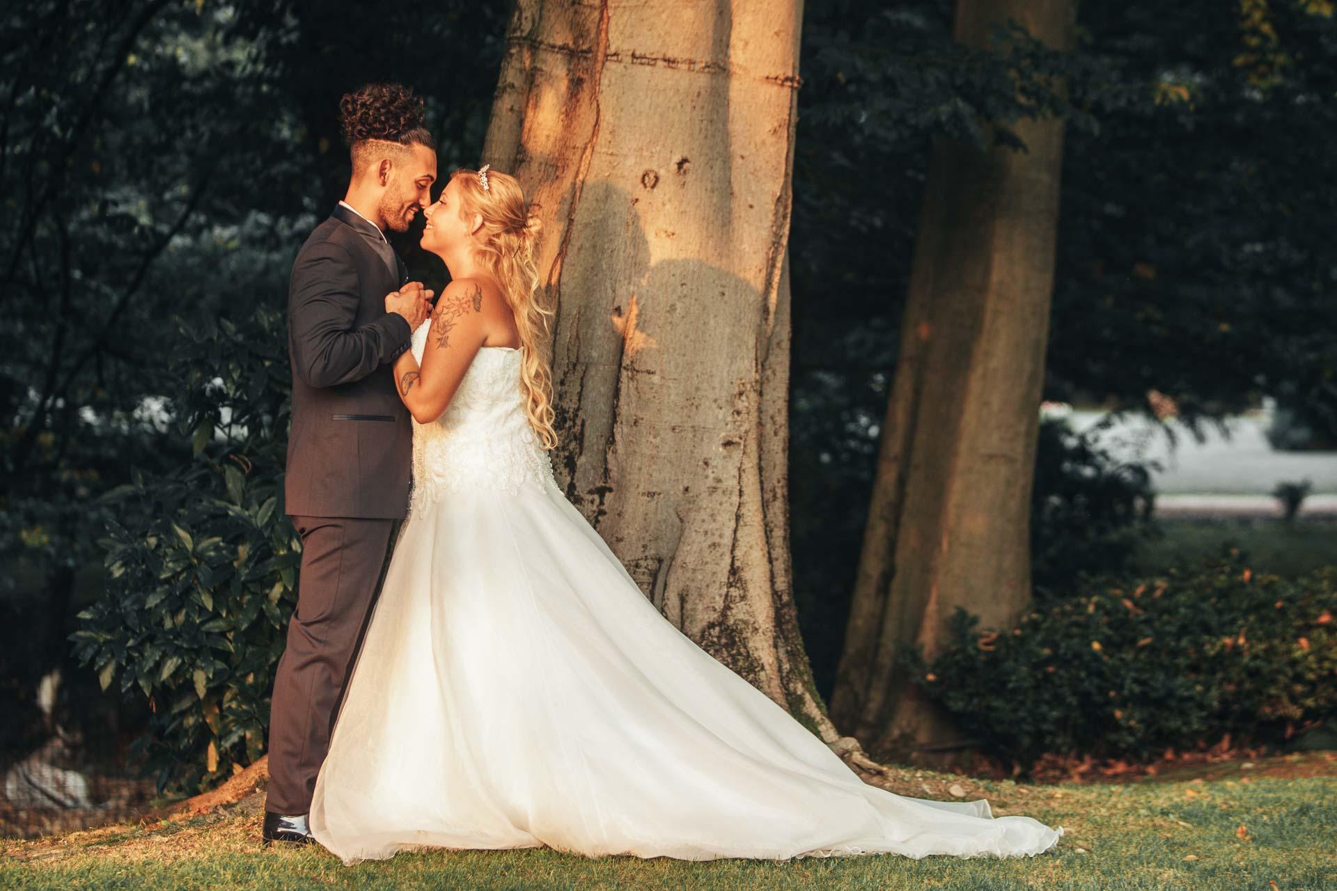 sposi bacio albero ombre